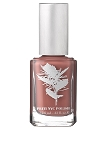 339- Star of Persia  pritinyc 5 free nail polish lacquer.